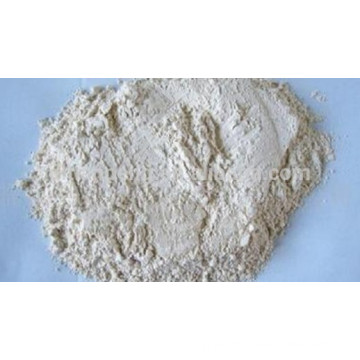 horseradish powder with stable price and supply