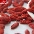 Factory supply wholesale high quality organic goji berry powder