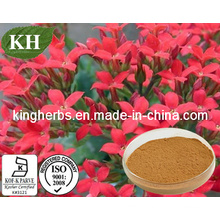 High Natural Polyphenols 50%; Salidroside 1%-5% Rhodiola Extract