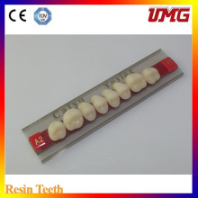 Dental Synthetic Polymer Teeth Resin Teeth