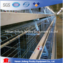 New Design a Frame Pullet Chicken Cage