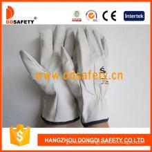 Goatskin Driver Leather Glove (DLD522)