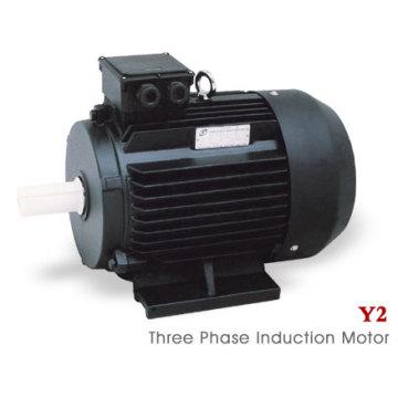Y2 Serie (MS) Dreiphasiger asynchroner Elektromotor (11kw)