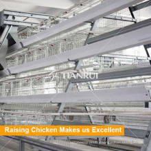 Hot Selling A Frame Automatic Layer Poultry Cages In Nigeria