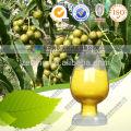 Extrait de Racine de Goldenseal Berberine 5% HPLC Coptis Extrait de Racine Berbérine