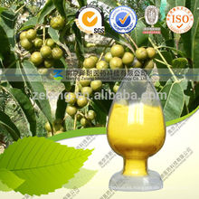 Berberis Aristata Sulphate Extract Powder
