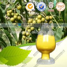 Extracto de raíz de sello de oro Berberine 5% HPLC Coptis Extracto de raíz Berberine