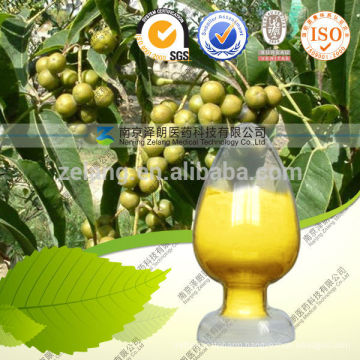 Berberine Hydrochloride Extract in Nanjing