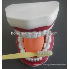 Nuevo modelo de cuidado médico dental estilo, cuidado dental de los dientes