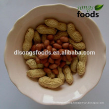 Suppier Chinese New Crop Raw Peanut In Shell