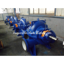 Double Suction Axial Shaft Pump