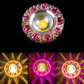glass two color cob led down light