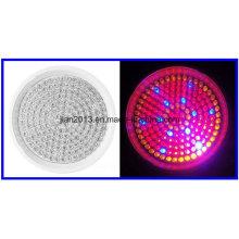 168LED AC110 / 220V 10W R: B: O = 102: 54: 12 Spectre en pot en plastique Grow Light