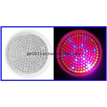 168LED AC110 / 220V 10W R: B: O = 102: 54: 12 Plástico Potted Spectrum Grow Light