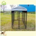 Canil para cães / grandes gaiolas para animais da fábrica