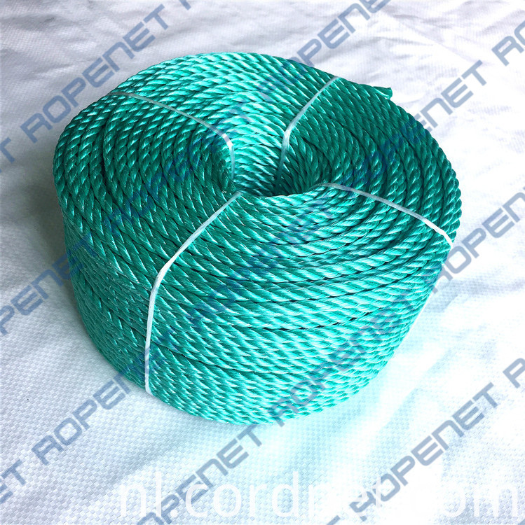 Pp Danline Rope 6mm 110m 23