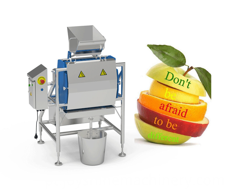 Industrial Juicer Equipment 03