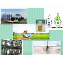 Régulateur de croissance des plantes 1 - Naphthalene Actic Acid Naa