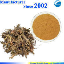 Natural Herbal root extract powder Spikenard Extract