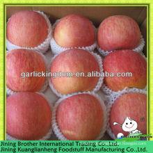 Roter Stern Apfelfrucht vom Ursprung