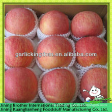 red star apple fruit from origin