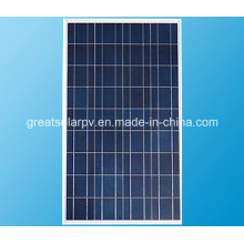 Skillful Manufacture 80W Poly Solar Panel, PV Module From China
