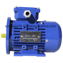 Y2 Series 3-Phase Electric Motors for Industry with ISO