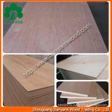 Muebles de calidad madera contrachapada lisa con buena calidad