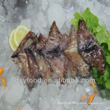 Hochwertiger gefrorener Tintenfischflügel
