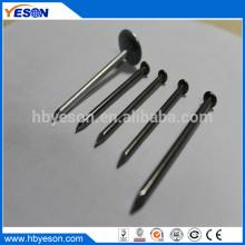 Bajo precio con clavos de alambre comunes de acero galvanizado de baja calidad de primera calidad