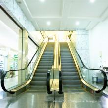 Fabricant professionnel Centre commercial Intérieur électrique VVVF Escalator Design By XIWEI