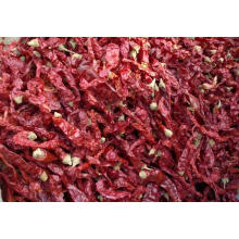 Export Good Quality Fresh Chinese Red Bell Pepper