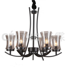 Hot Chandelier Pendant Lamp with Glass Shade (SL2246-6)
