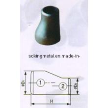 Carbono de aço Excêntrico Redutor Fsgp / LG