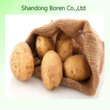 Китайский новый картофель с хорошим качеством