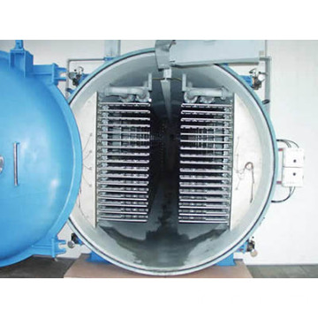 Hot Sale Vacuum Freeze Dryer for Industry