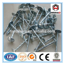 """Umbrella head ROOFING NAIL 10bwg*3""""packing in bag"""