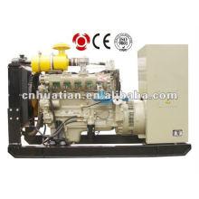 Natural ou Bio gerador de gás (10Kw a 700kW)
