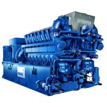 Honny 400kw-100mw Marque Mwm Farm Biogas Generator