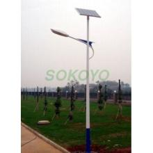 Solar LED Lights/Lamps with 40W LED lamp