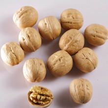 Uitstekende kwaliteit walnoten verkoop