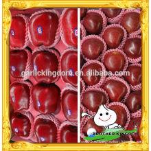Хуаниу яблоко / Китай Хуаниу яблоко / Красное вкусное яблоко