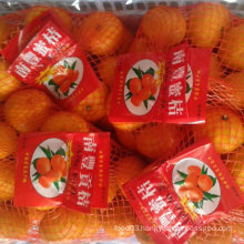 Good Quality of Fresh Sweet Baby Mandarin