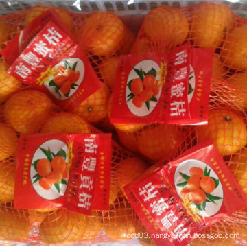 Good Quality of Fresh Sweet Baby Mandarin