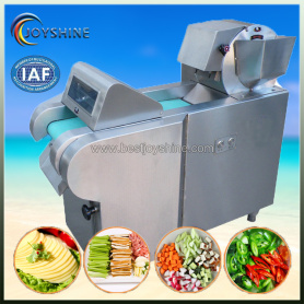 Many shapes fruit and vegetable slice cutting machine
