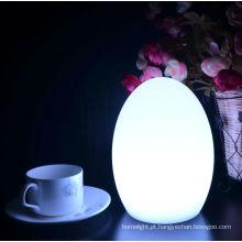 Recarregável de mesa de luz em mudança da cor decorativa multi