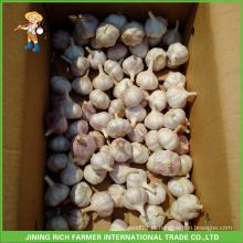 Atacado Chinesa Fresco Normal Branco Branco Puro Branco Vermelho Roxo Alho Branco 5.5CM Mesh Bag Em 10KG Carton