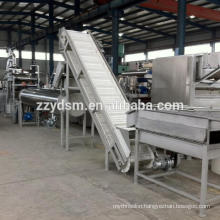 Complete cashew apple juice processing line