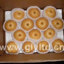 Poire Fengshui fraîche chinoise exportée