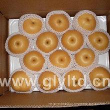 Qualidade Exportada Chinês Fresh Fengshui Pear